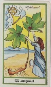 Judgement-Tarot-Card